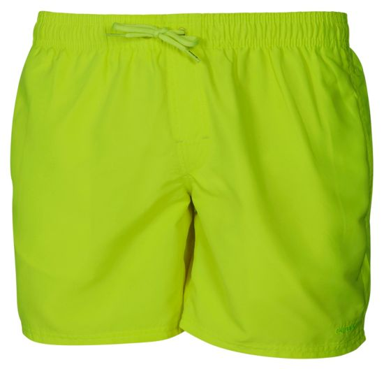 Holland Shorts Herre GREEN