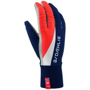 Glove Classic Langrennshansker Herre