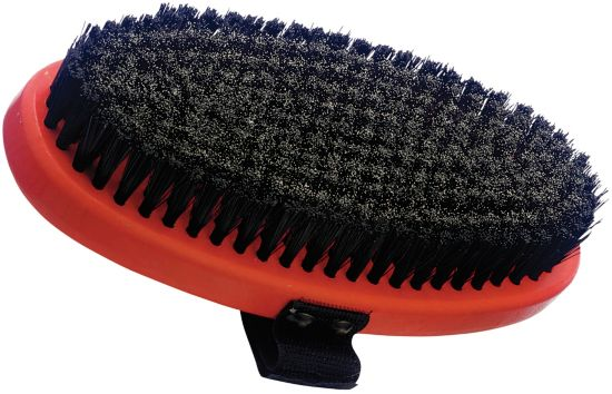 T179O Brush Oval Steel
