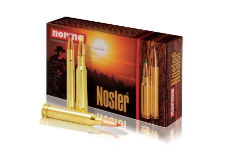 Riflepatron Nosler 30-06 11,7G.20S