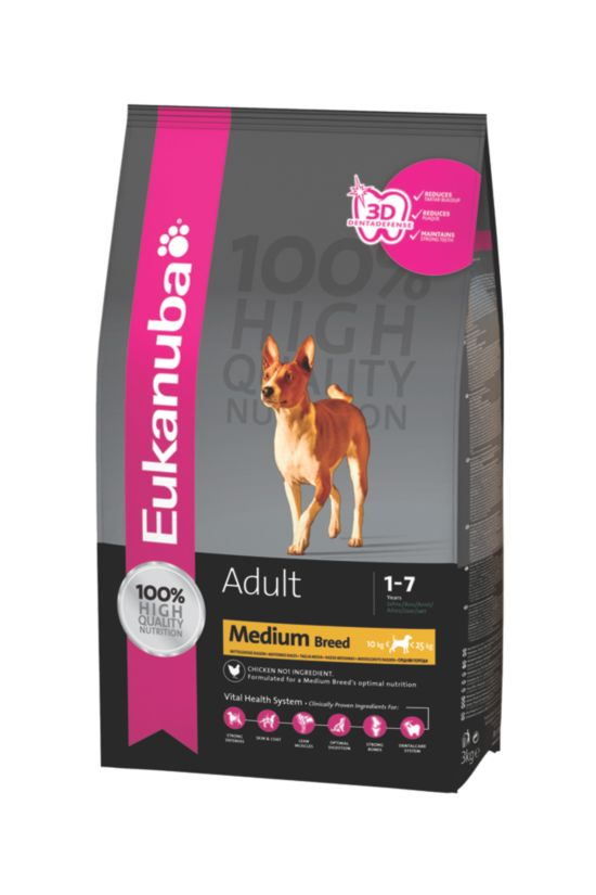 Dog Adult Medium Breed