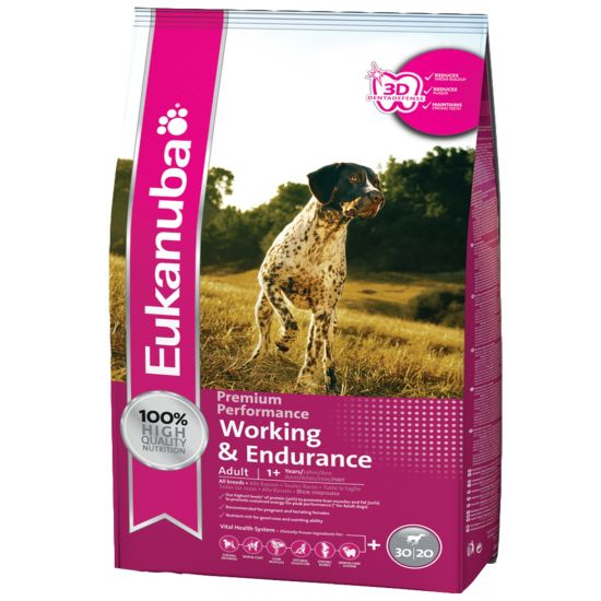 Dog Adult Working & Endurance
